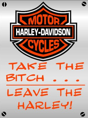 Take the bitch and leave the harley!